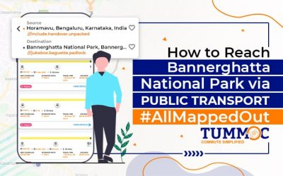 How to Reach Bannerghatta National Park Using Public Transport #AllMappedOut